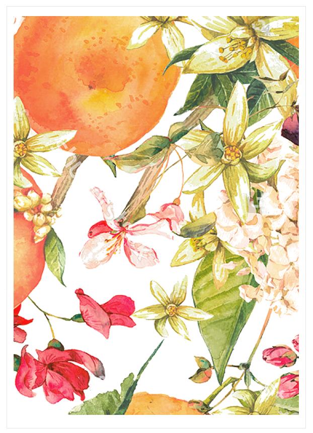 Imagen del producto: Modelo nº 1713: Flores para tarta